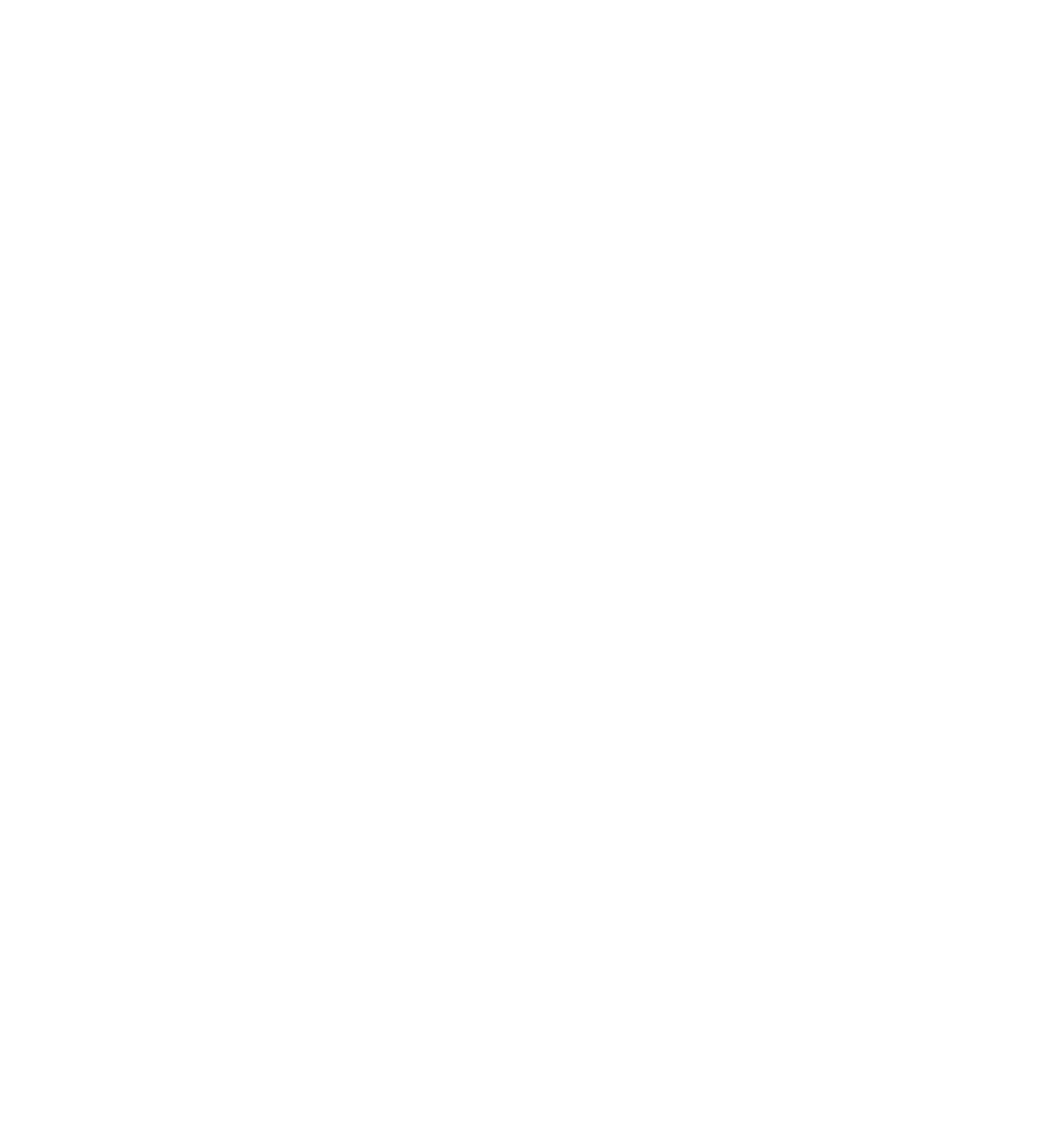 Logo CNCS blanc - 2019